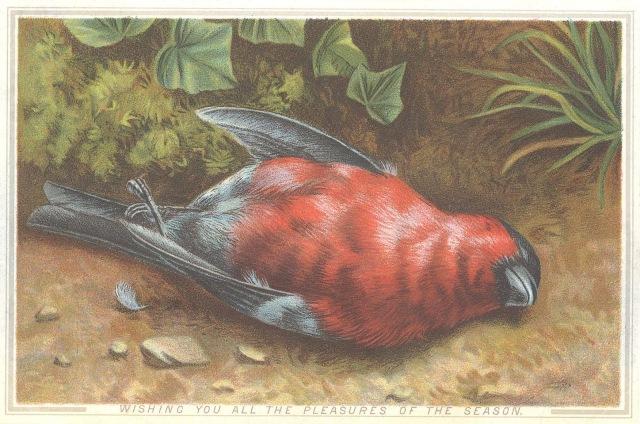 dead-bird-victorian-card