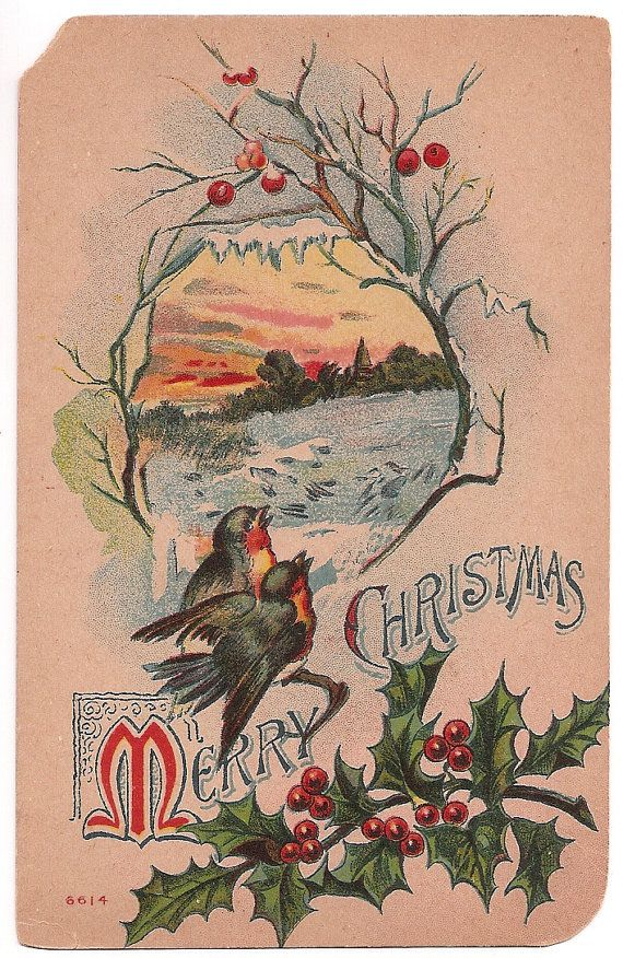 robins-1910-christmas-card-peering-into-otherside